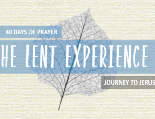 The Lent Experience
